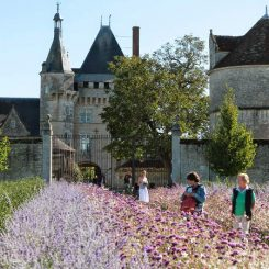 Chateau de Talcy proche du gite