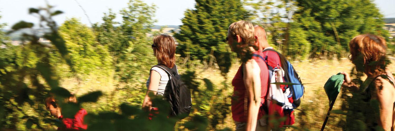 Les randonnées proche du gite de groupe