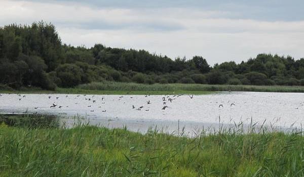 Le gite de groupe est à proximité de l'étang de Beaumont