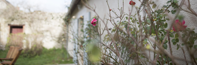 Le gite grande capacité possède un petit jardin secret