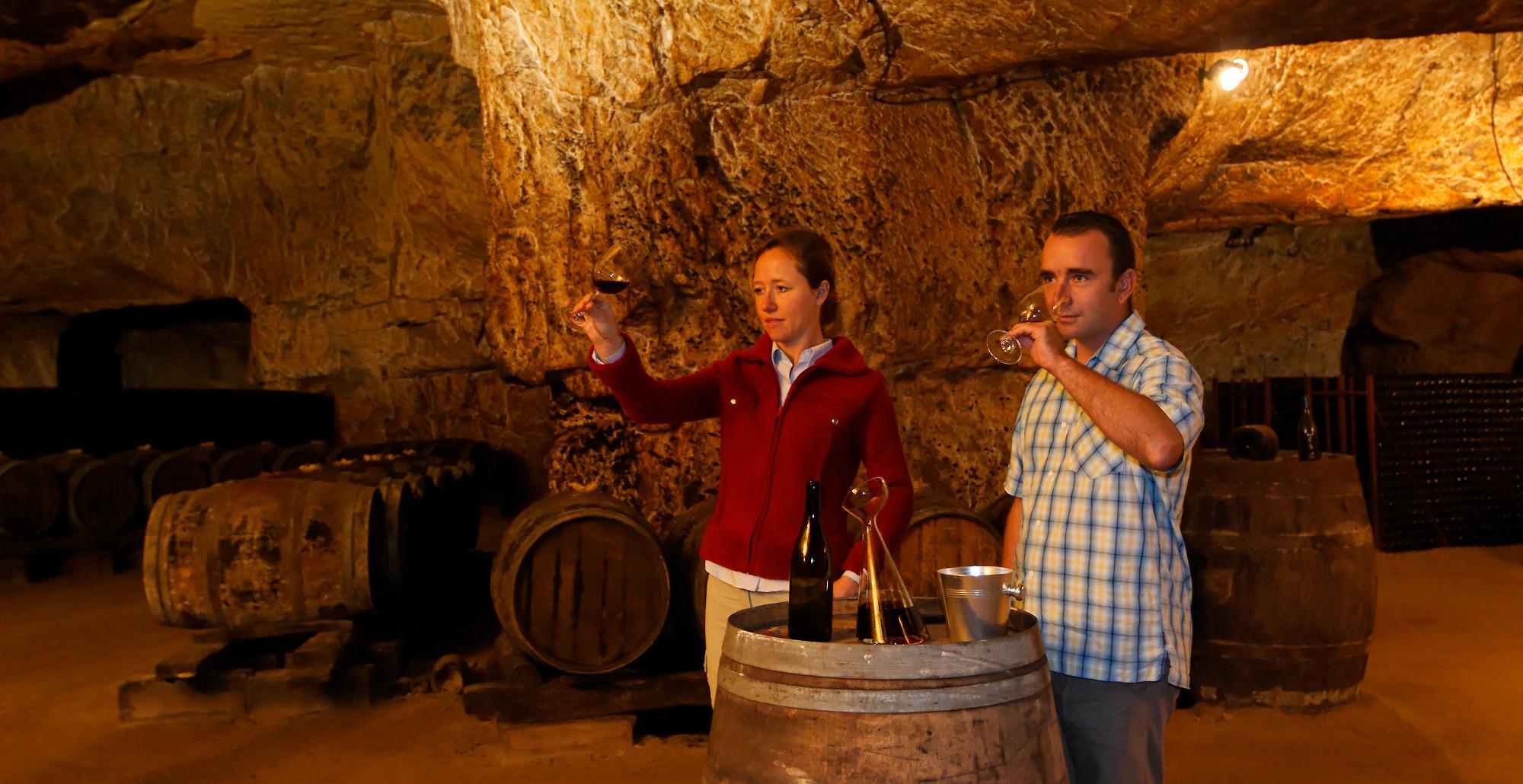 stage de dégustation de vin dans le gite de groupe