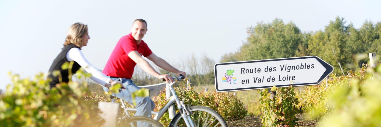 Promenez vous en vélo à proximité de notre gite de groupe