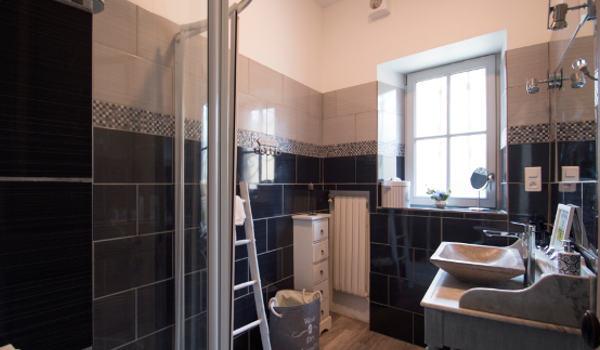 la salle d'eau de francois avec douche et déco